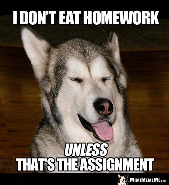 essay about assessment rainy day