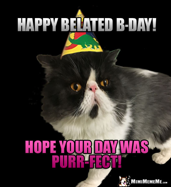 Cat Wearing Party Hat Says Happy Belated B Day Hope Your Was