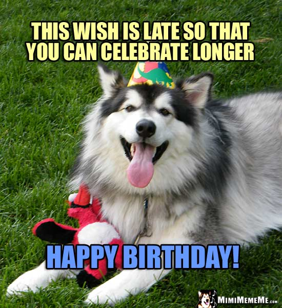 Funny Dog Tells Birthday Jokes Happy Belated Birthday From Dog Pg 7 Mimimememe