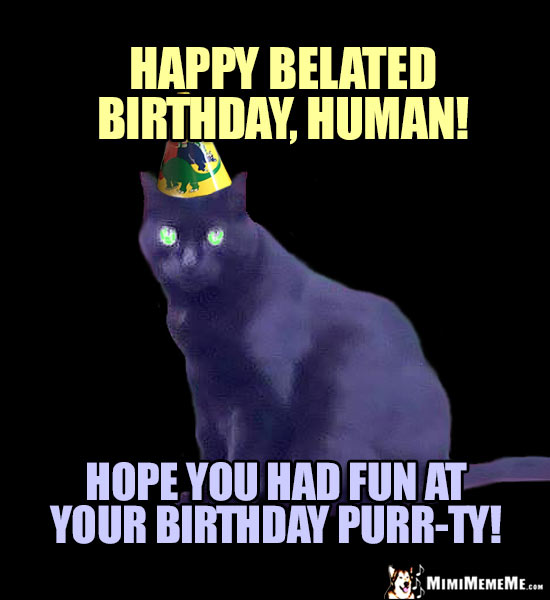 Cat in Party Hat Says: Happy Belated Birthday, Human! Hope you had fun at your birthday purr-ty!
