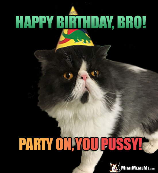 Manly Cat Wearing Party Hat Says Happy Birthday Bro On You Pussy