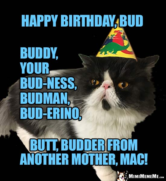 Birthday Cat Happy Bud Buddy Budman Budder From Another