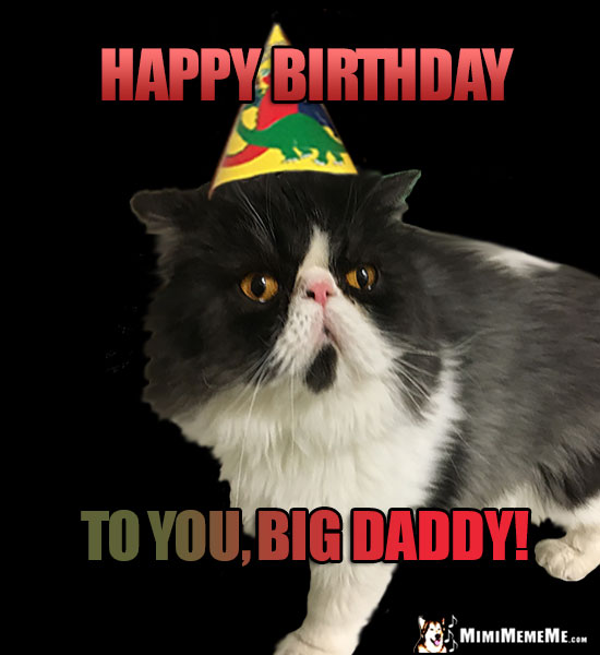 Happy Birthday Dad Funny Animals Wish Daddy Father Pops A