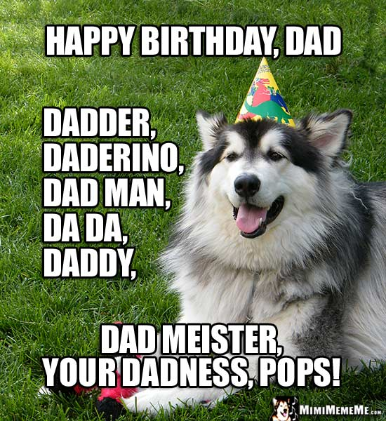 happy birthday dad funny animals wish daddy father pops a happy b