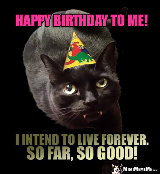bDayForever2 funny cats tell birthday jokes, happy birthday from kitty! pg 6