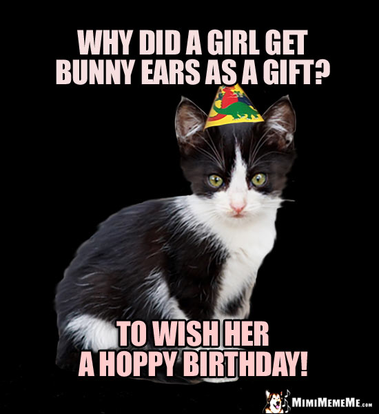 Party Kitten Asks: Why did a girl get bunny ears as a gift? To wish you a Hoppy Birthday!