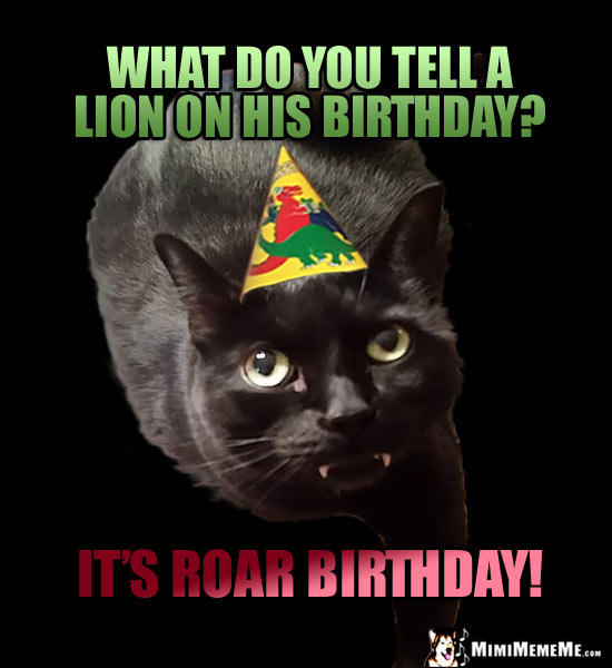 bDayLion funny cat birthday jokes, cat purr day memes, a mewsing b day humor