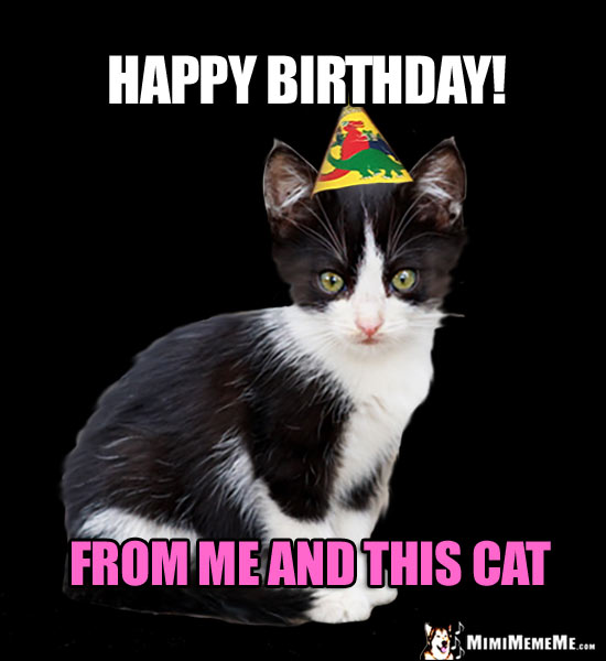 Mew Happy Birthday From Me And This CAT