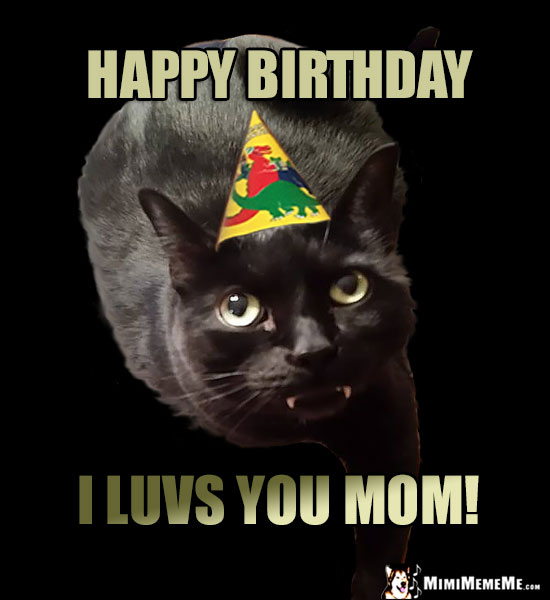 Cat Wearing Party Hat Says: Happy Birthday, I luvs you Mom!