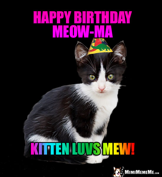 Kitten in Party Hat Says: Happy Birthday Meow-Ma. Kitten luvs mew!