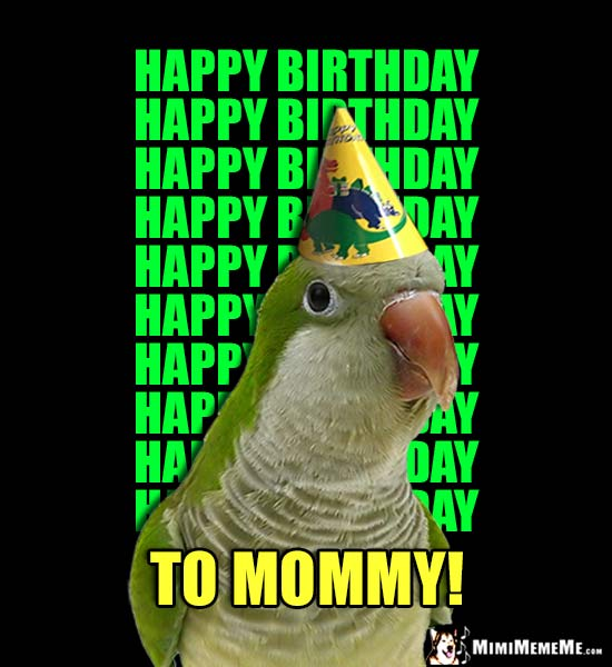 Parrot Wearing Party Hat Says Happy Birthday 10 Times... To Mommy!