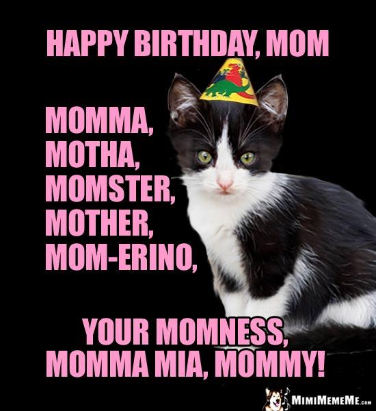 bDayMommaCat happy birthday mom! funny party animals wish mommy, mother, momma