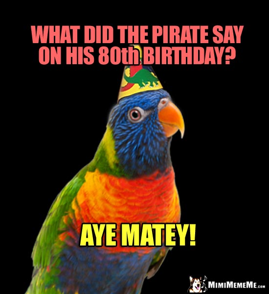 Party Parrot Joke: What did the pirate say on his 80th birthday? Aye Matey!