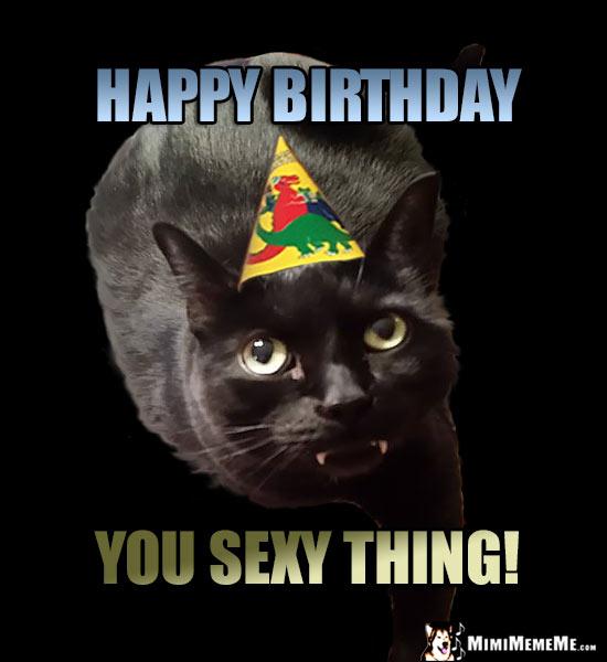bDaySexycat mimimememe site map to funny dog jokes, cat comedy, birthday humor