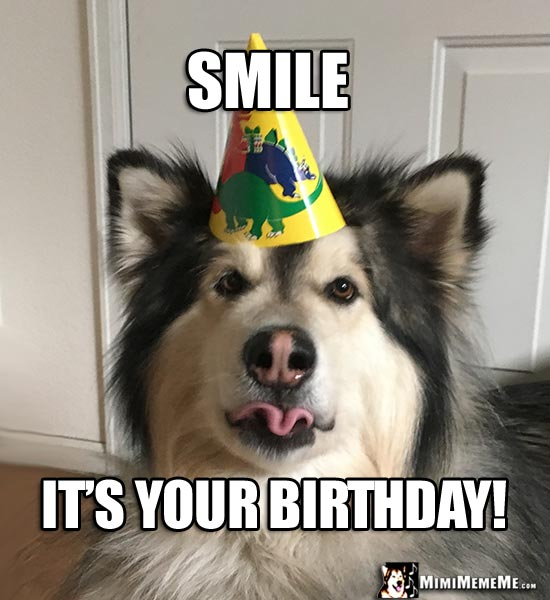 Party Dog Making A Funny Face Says Smile Its Your Birthday