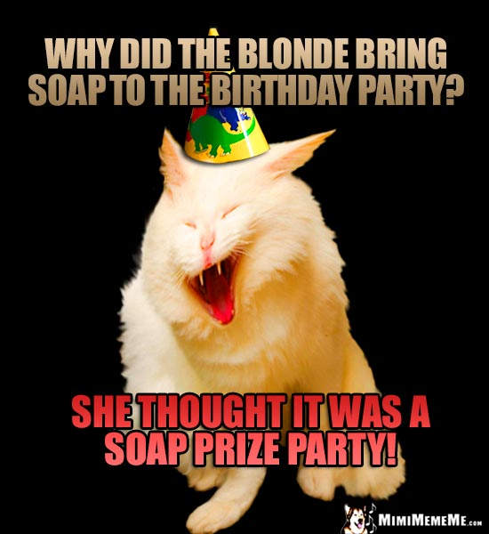 Party Cat Riddle Why Did The Blonde Bring Soap To Birthday She