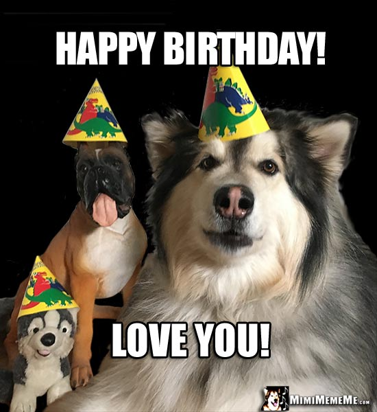 Dogs In Party Hats Say Happy Birthday Love You