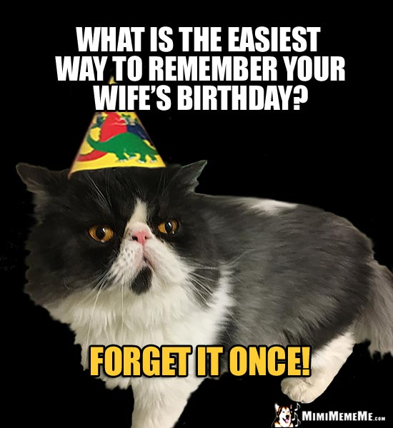 Party Cat Asks: What is the easiest way to remember your wife's birthday? Forget it once!