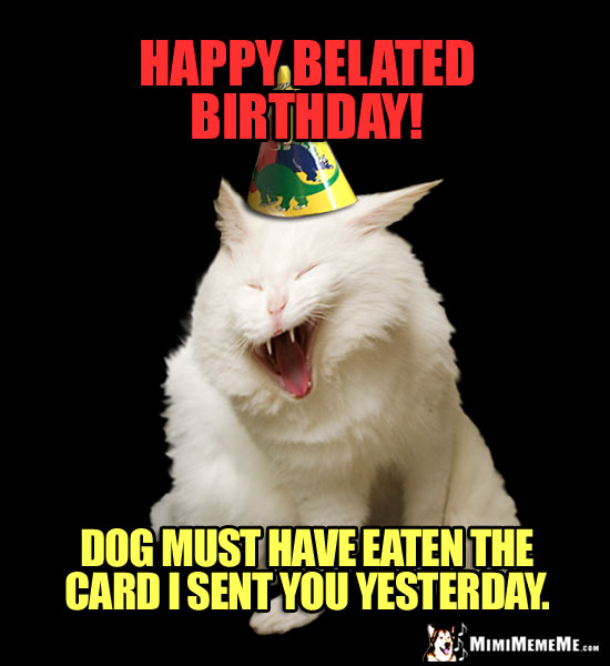 Laughing Cat Wearing Party Hat Says: Happy Belated Birthday! Dog must have eaten the card I sent you yesterday.