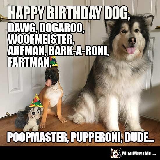 Party Dogs Happy Birthday Dog Dawg Dogaroo Woofmeister Arfman