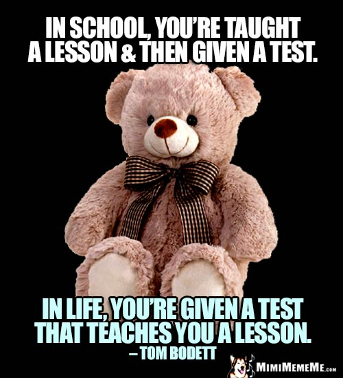 Teddy Bear Quote: In school, you're taught a lesson & then given a test. In life, you're given a test that teaches you a lesson. - Tom Bodett