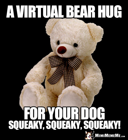 Teddy Bear: A virtual bear hug for your DOG, squeaky, squeaky, squeaky!