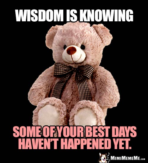 Wise Teddy Bear Says: Wisdom is knowing some of your best days haven't happened yet.