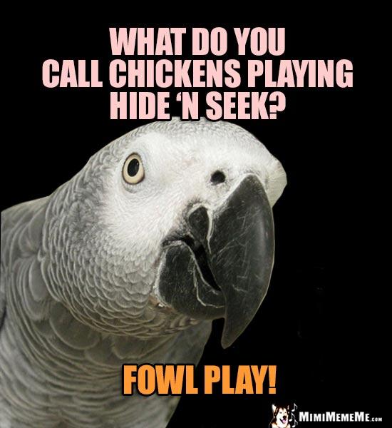 Bird Puns Parrot Word Play Cheep Lols Polly Humor Pg 2