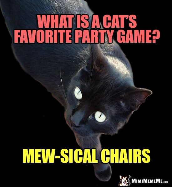 Cat Joke: What is a cat's favorite party game? Mew-sical chairs