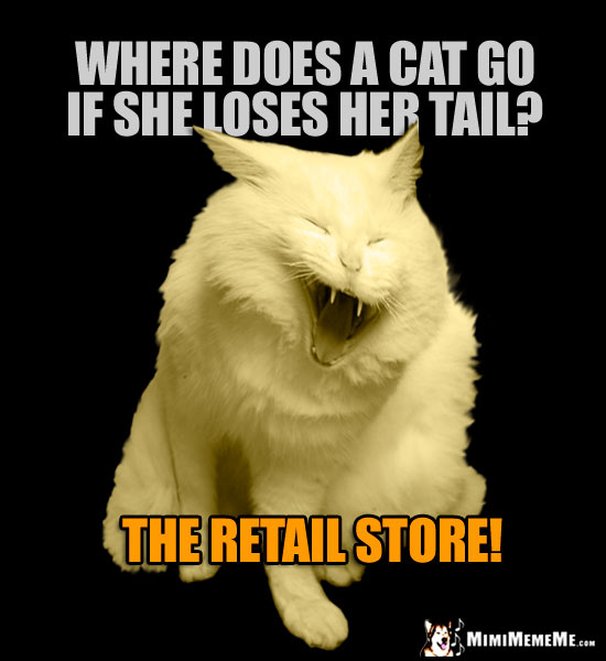 Laughing Cat Asks: Where does a cat go if she loses her tail? The retail store!