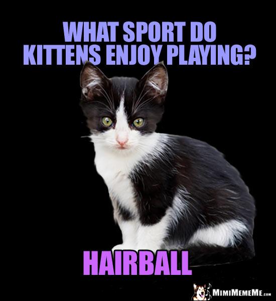 Little Kitty Joke What Sport Do Kittens Enjoy Playing Hairball