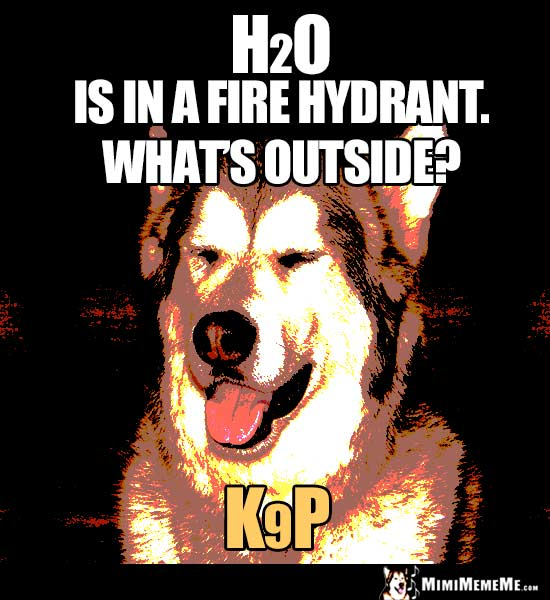 Dog Joke: H2O is in a fire hydrant. what's outside? K9P