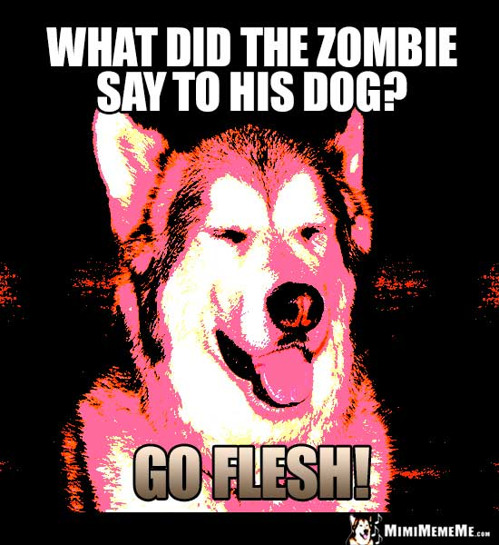 Halloween Dog Joke: What did the zombie say to his dog? Go Flesh!
