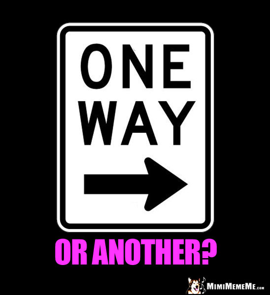 One Way Sign: One Way or Another?